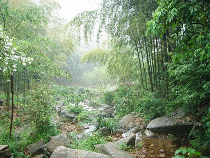 杭州自助游临安白水涧门票浙江临安旅游景点