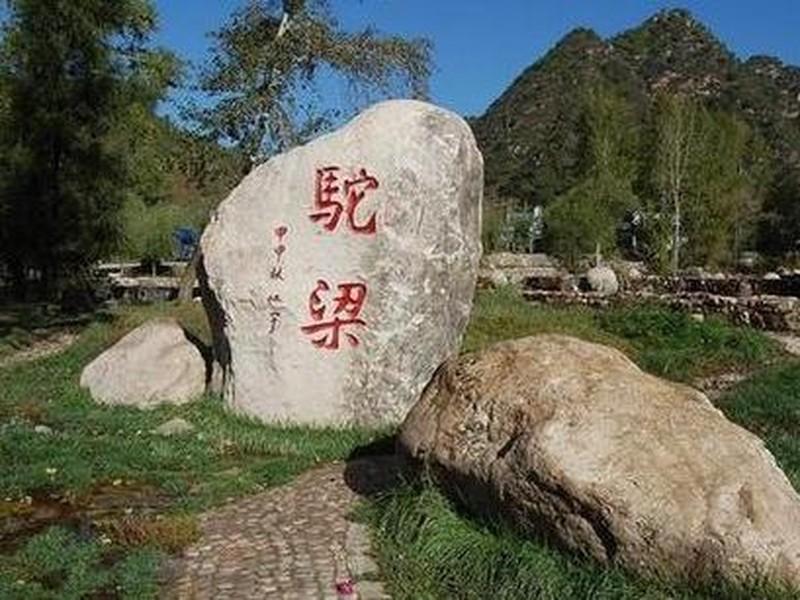 石家庄(13)秦皇岛(12)保定(5)张家口(4)承德(2)邢台