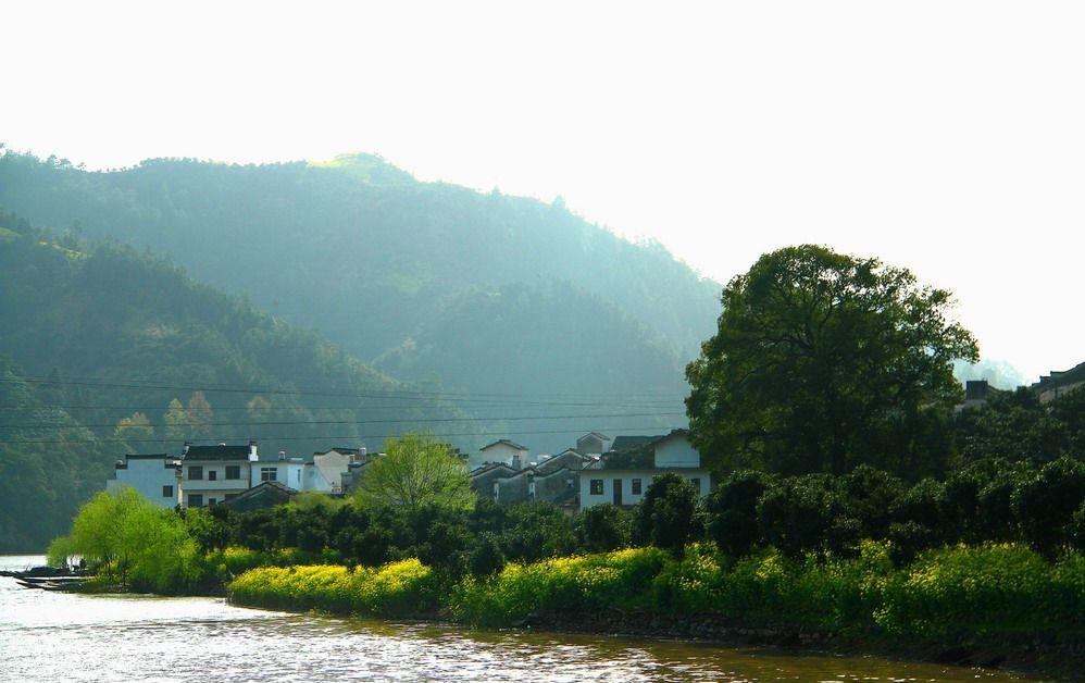 青岛春天大自然风景